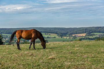 Uitzicht op de heuvels van Zuid-Limburg van John Kreukniet