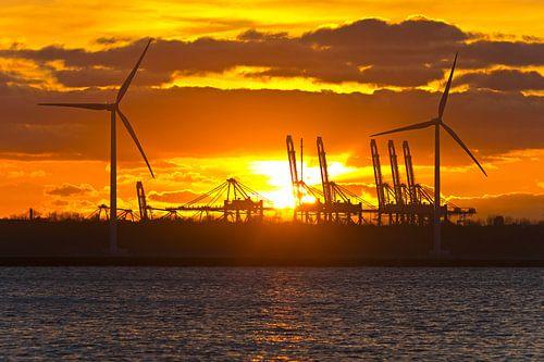 Zonsondergang tussen de windturbines te Rotterdam