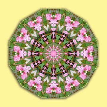 Bleeding heart, Flower Mandala van Barbara Hilmer-Schroeer