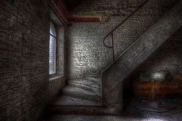 Escaliers sur Eus Driessen