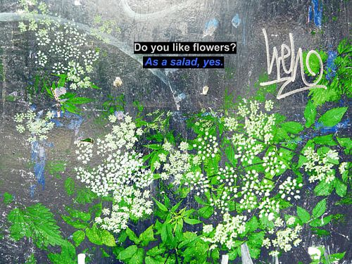 Small Talk: Do You Like Flowers? van
