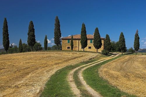 I Cipressini der bekannteste  haus in Italien von Dennis Wierenga