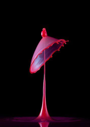 Liquid ART - Rosa TaT van