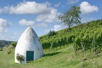 Wijngaard met trullo in Rheinhessen van Peter Eckert