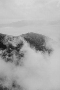 Mistige morgen in de bergen in Frankrijk van Holly Klein Oonk