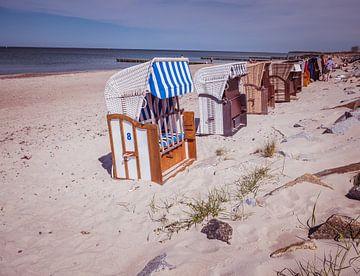 Strandkörbe am Strand in Warnemünde von Animaflora PicsStock