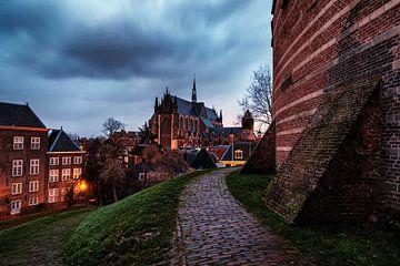 Storm over Leiden sur Eric van den Bandt