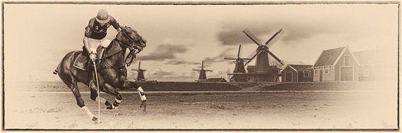 Polo en Holanda