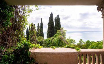 Verlaten Begroeid Balkon. van Roman Robroek