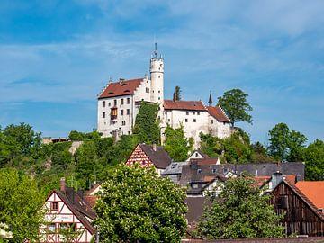 Burg Weinstein n Gößweinstein bij Forchheim in Beieren van Animaflora PicsStock