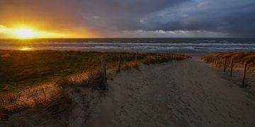Sonne, Meer und Sand an der niederländischen Küste von Dirk van Egmond