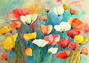 Bunter Mohn Aquarell Malerei Klaprozen Mohnblumen Blumen von Siegfried Dahlhaus
