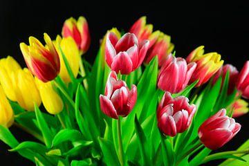 Tulpenstrauss von Thomas Jäger