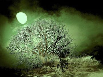Mystische Mondnacht van Heidrun Carola Herrmann