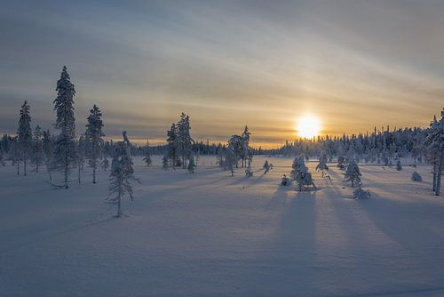 Zonsopkomst in Lapland
