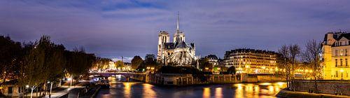 Notre-Dame van Parijs van Herman Coumans