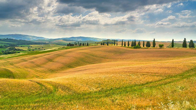 beeld van het landschap in Toscane van eric van der eijk