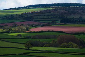 Somerset Landscape van Hans Kool