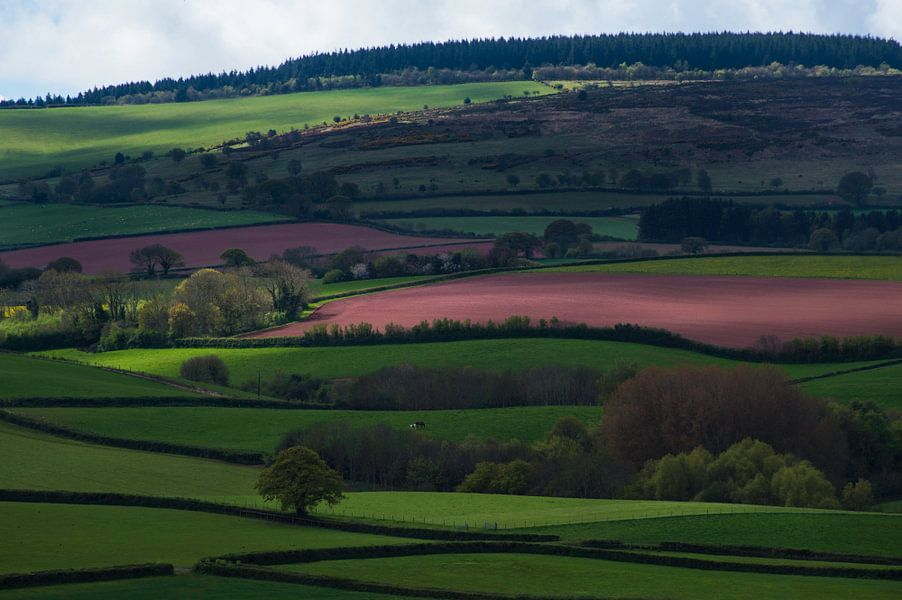 Somerset Landscape