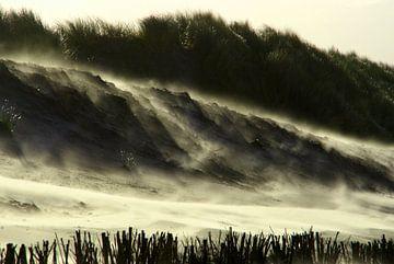 Strand in brand van Marieke van der Doef