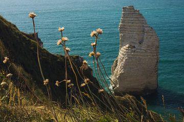 Freistehender Kreidefelsen bei Etretat, Normandie mit Blumen von Paul van Putten