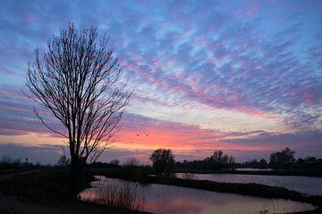 Sonnenaufgang über dem Wasser von A'da de Bruin