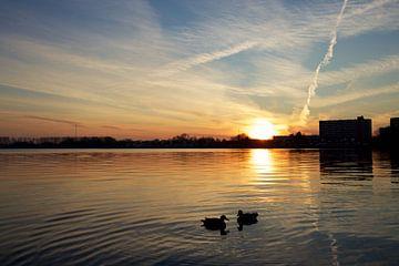Zegerplas à Alphen aan den Rijn au coucher du soleil sur jordan blaauw