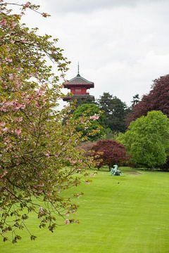Die königlichen Gewächshäuser und der Garten von marijke servaes