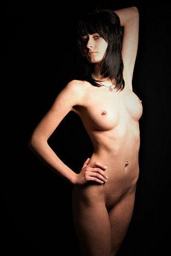 Nude van
