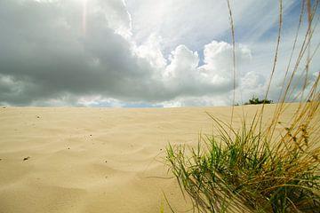 Nederlands weer met zonlicht door de wolken in Nationaal park Loonse en Drunense duinen van Marco Leeggangers