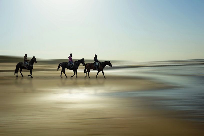 Horses at the beach van Peter Roder