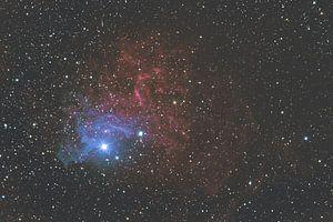 Vlammende ster nevel van Kristof Piotrowski