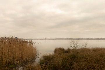 Landschaft Der Goorven in Esbeek Teil des Anwesens der Utrecht von Marianne van der Zee