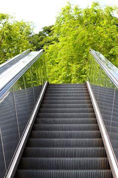 Rolltreppe zu den Bäumen von Martijn Stoppels
