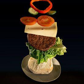 Der fliegende Hamburger teil zwei. von Pieter van Roijen