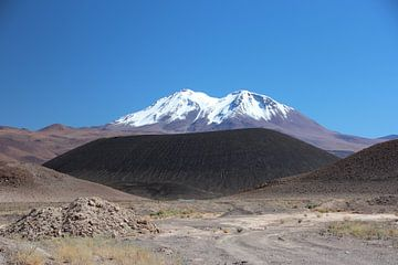 Salar de Ascotan, Chili, Vulkaan van A. Hendriks