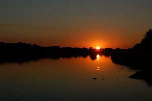 Bush river dreams van René Meester