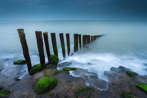 Between land and sea