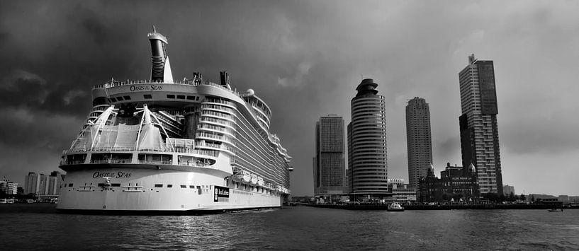 Oasis of the Seas in Rotterdam van Eus Driessen