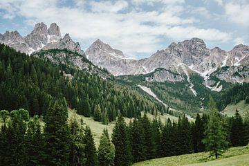 Alpen in Oostenrijk van Patrycja Polechonska