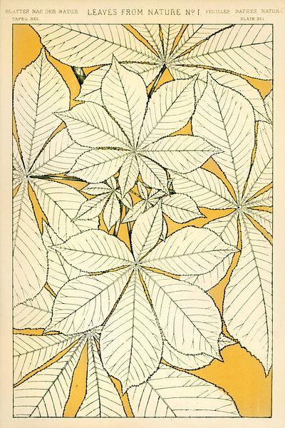 Owen Jones's famous 19th Century The Grammar of Ornament van 1000 Schilderijen