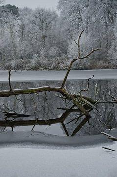 Een winters landschap van Remco Swiers