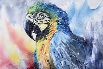 Papagei Aquarell von Lineke Lijn