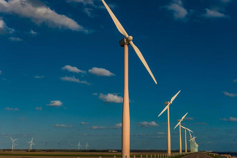 Windmolen  van Brian Morgan