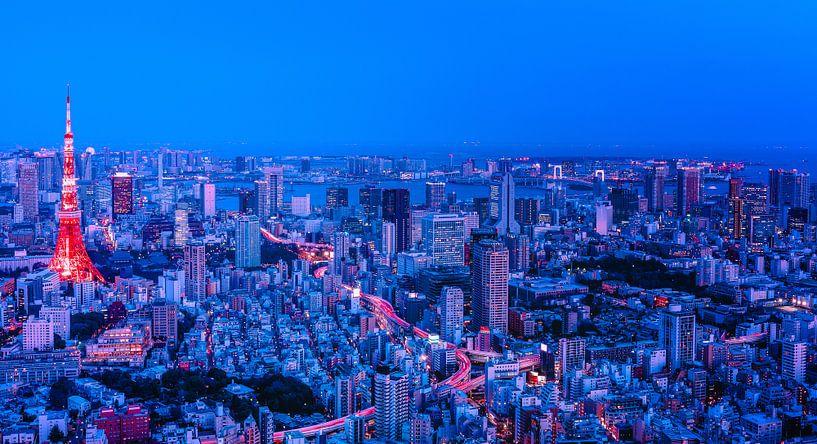 Tokyo in Red and Blue van Sander Peters Fotografie