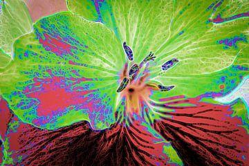 Close up van een geranium van Rietje Bulthuis