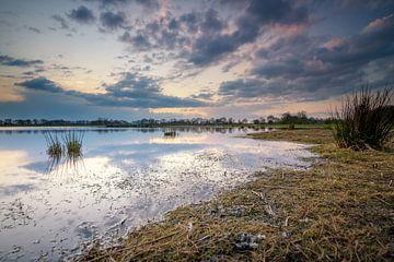 Natuurgebied Marumerlage Groningen van