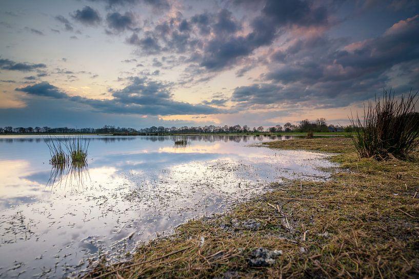 Natuurgebied Marumerlage Groningen van Martijn van Dellen