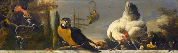 Vögel auf einer Balustrade - Melchior d'Hondecoeter