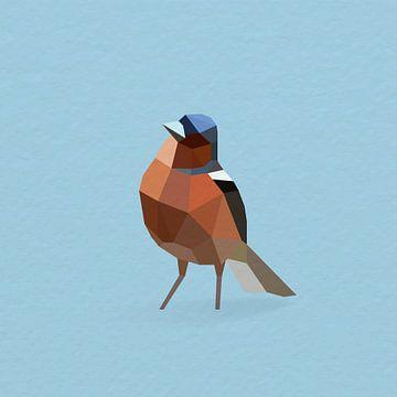 Fink (Vogel, Polygon) von Color Square